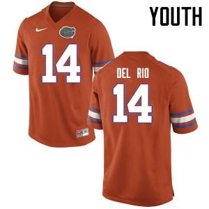 Youth Florida Gators #14 Luke Del Rio College Football Jerseys Orange 221578-605